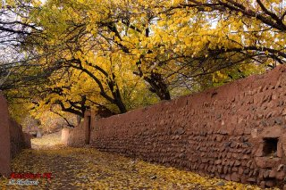 autumn-abiyaneh-92_23
