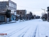 winter-92-arisman_260