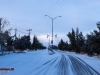 winter-92-arisman_264